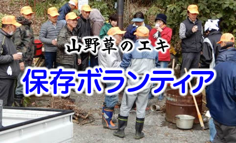 山野草のエキ 保存ボランティア