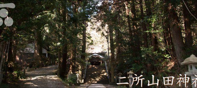 二所山田神社の山野草